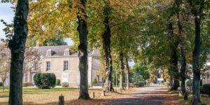 Seul Accrobranche de France au cœur d'un Hôtel 4 étoiles